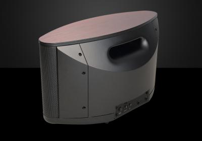 Bryston Wireless/Networked Speaker - BryFi BW-1
